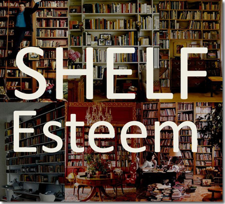 shelf esteem image
