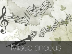 Gallery - Miscellaneous