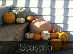 Gallery - Seasonal